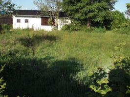 03080-2737-200530-Schatz02
